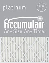 Accumulair Platinum Filter