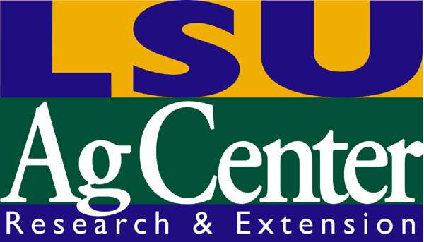 LSU Research